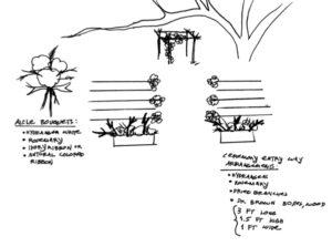 Ceremony-Decor-Concept