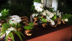 Honolulu-Garden-Club-centerpieces